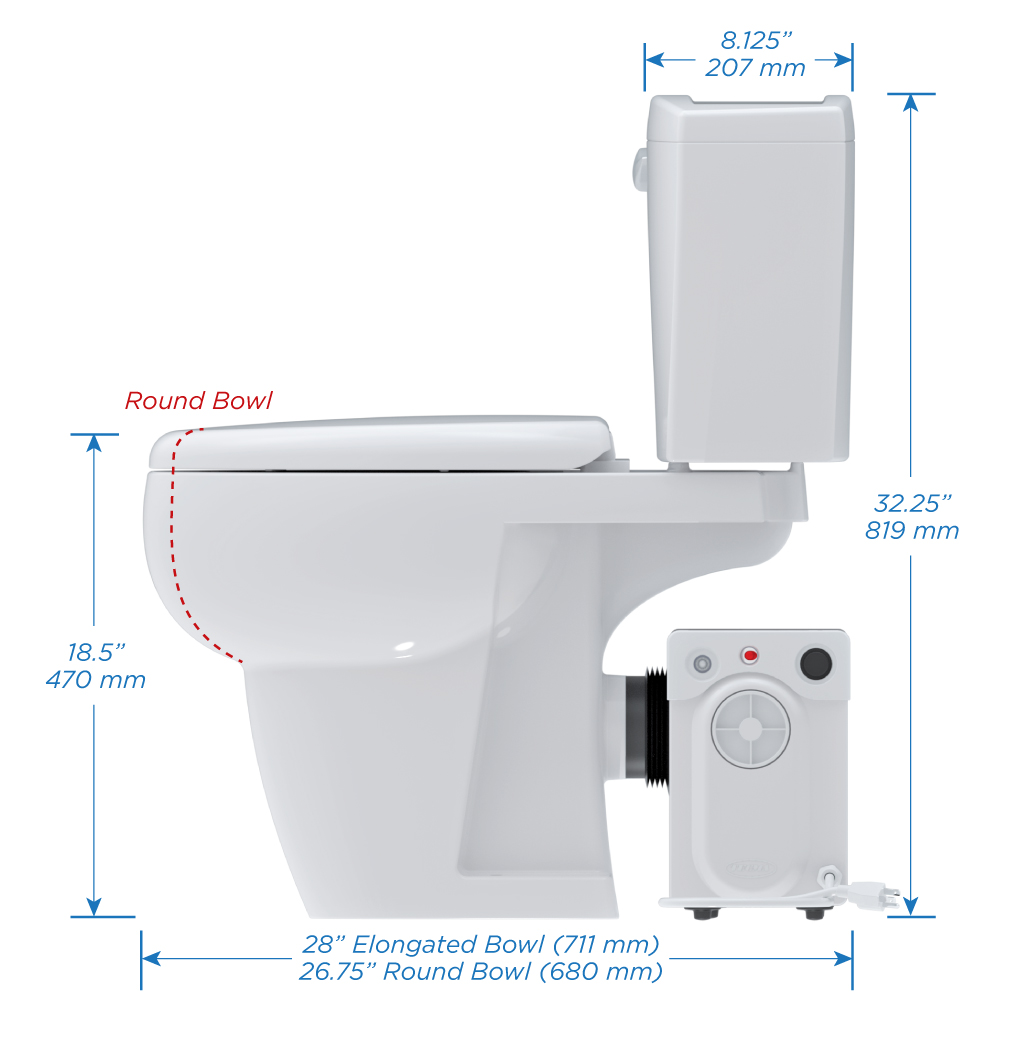 Toilet Bowl White Bathroom Anywhere